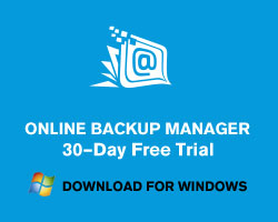 Online Backup Manager for PC